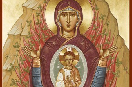 A devoção mariana nos leva a Jesus